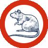 Pest-Control-icons-4
